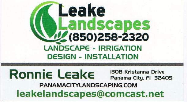 leake_landscapes_business_card.jpg